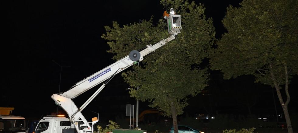Yeni metro hattında ağaç seferberliği